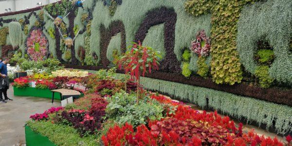 BotanicGardenWall