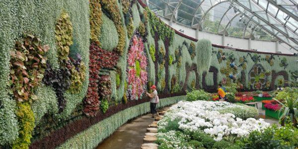 BotanicGardenWall2