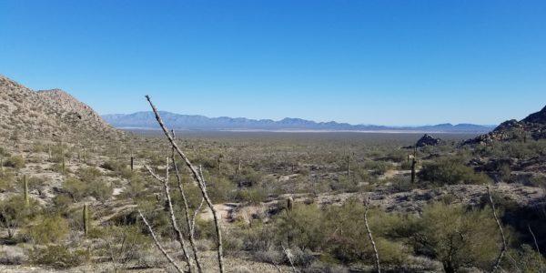 DesertVista