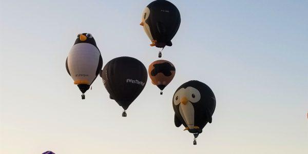 FlockofBird-Balloons