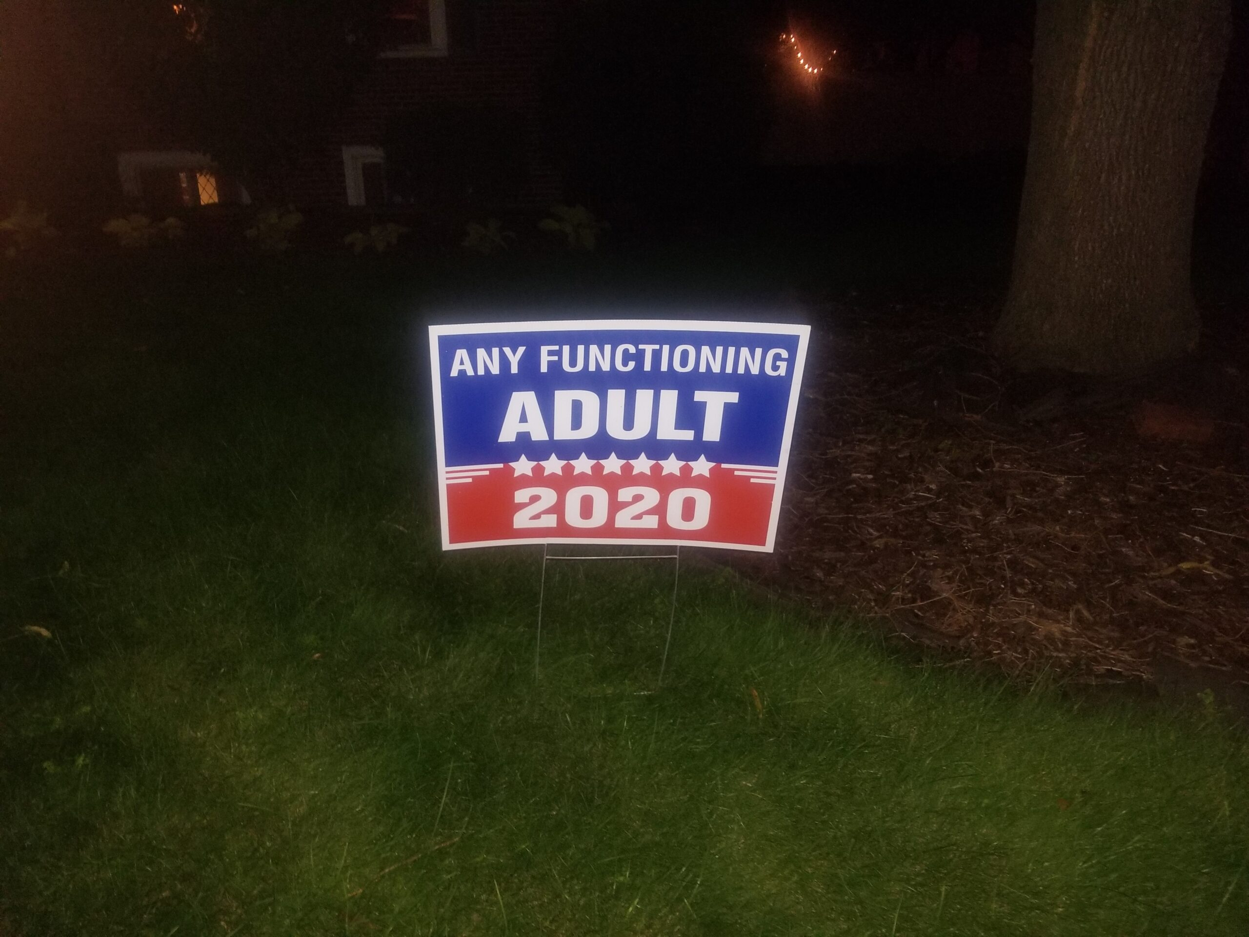 ExcellentLawnSign2020